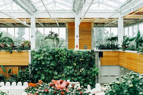 Locaux d'une entreprise paysagée avec un mur végétalisé
